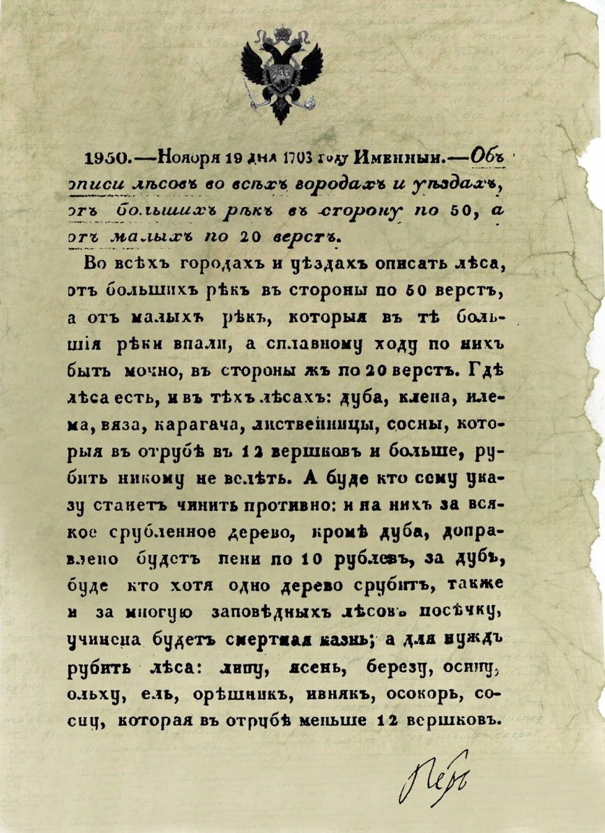 Лесное хозяйство России переживает 305-ую годовщину основания. Новости